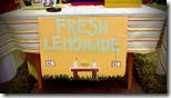 top10-fresh-lemonade