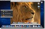 parallels_lion__090111-520x325